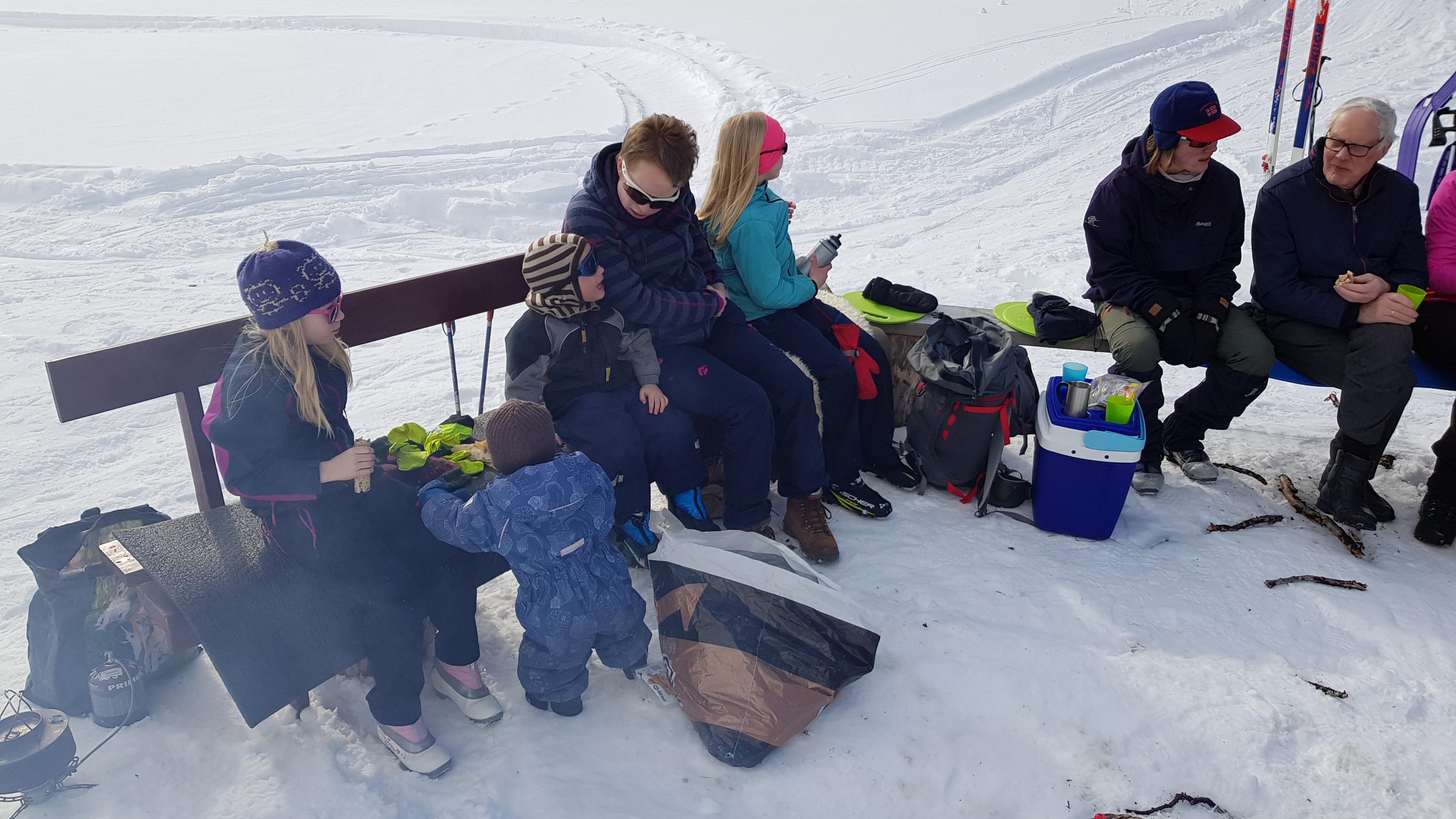 Familiemøte, griling og skileik på Narbuvoll